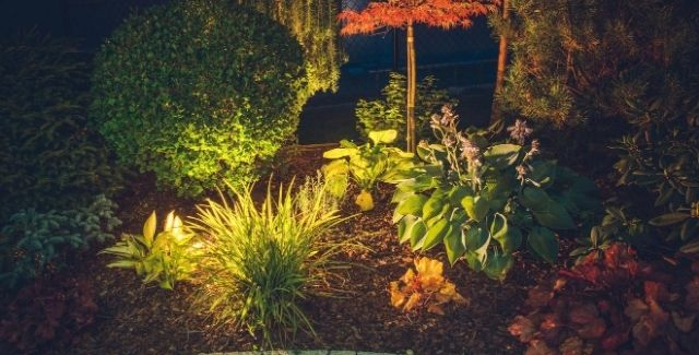 Garden Lighting Top Tips